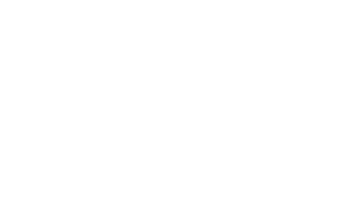 slide-iconos